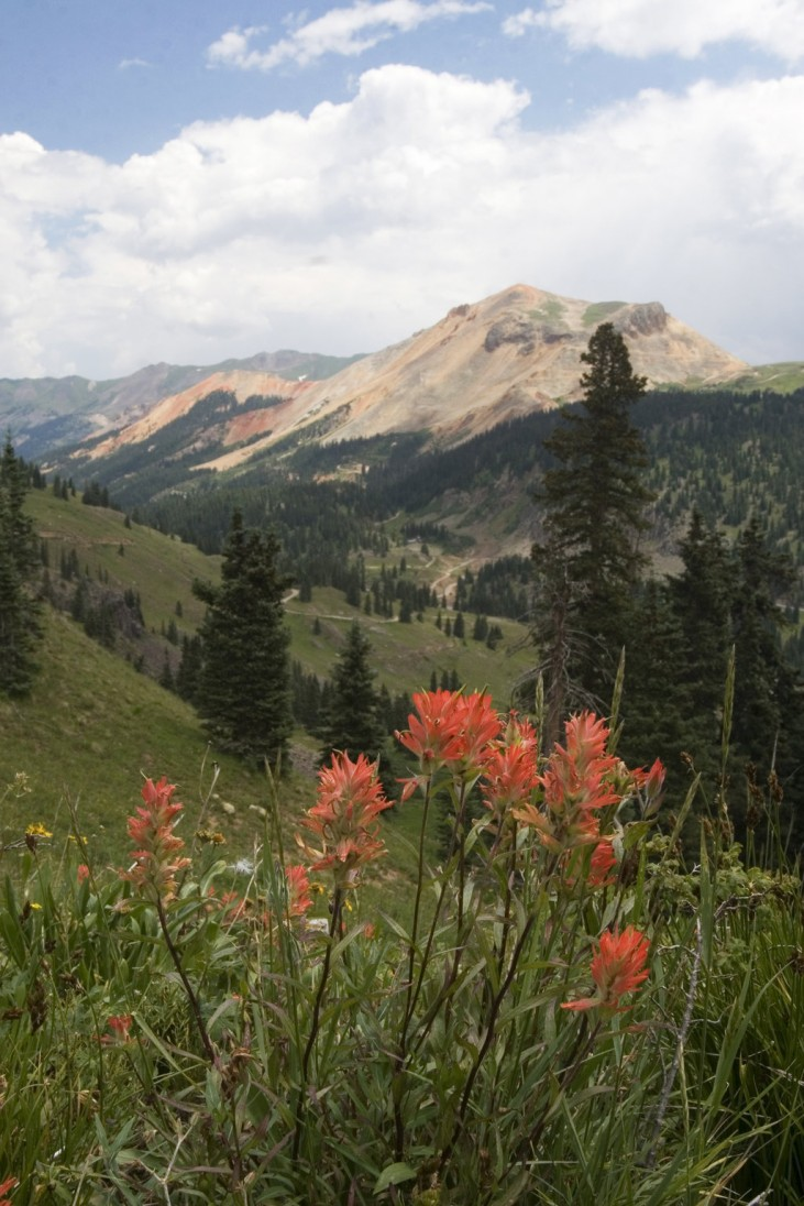 Ouray Adventure Tour Package
