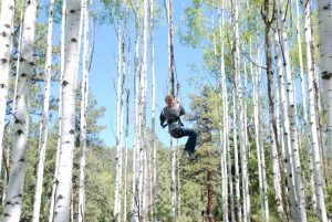 Flying through a gorgeous grove of aspen trees. Photo courtesy of DATO.